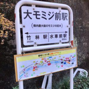 大モミジ前駅